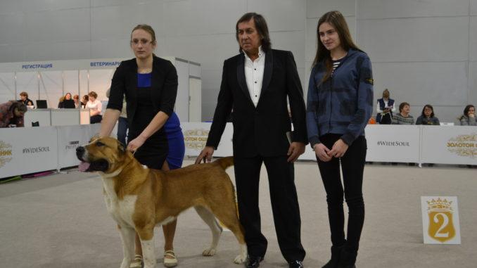 Иншаков, президент ркф, среднеазиатская овчарка, алабай, золотой ошейник